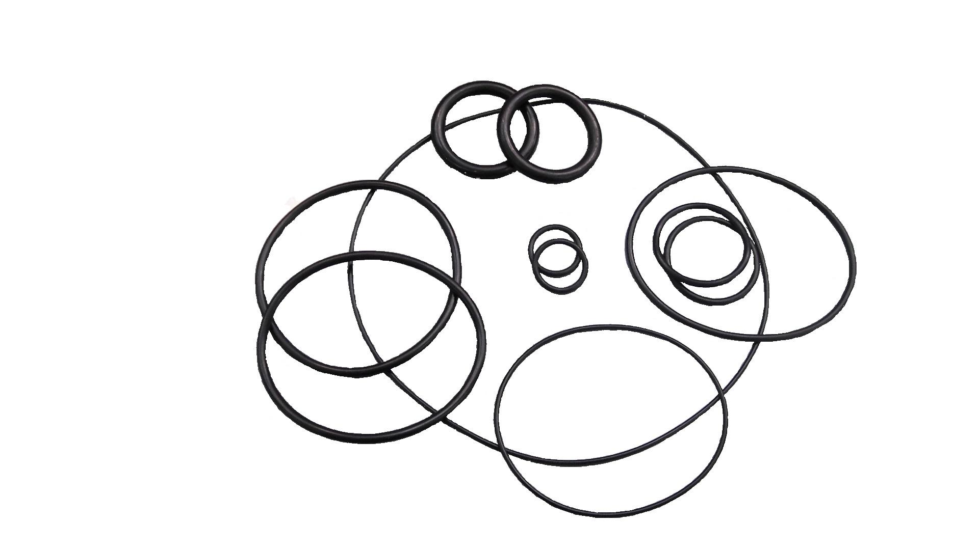 O-Ring Cord & Foam Seal Strip